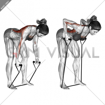Band bent-over row