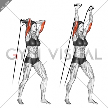 Band overhead triceps extension