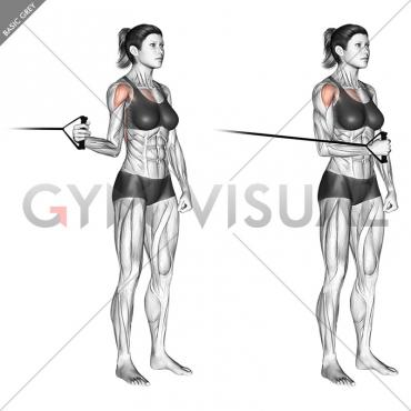 Band standing internal shoulder rotation