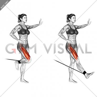 Band standing leg extension