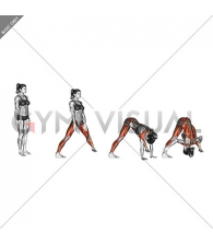 Wide legged Forward Bend Prasarita Padottanasana