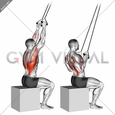 Band close-grip pulldown