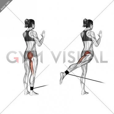 Band standing hip extension