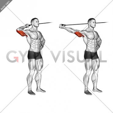 Band side triceps extension
