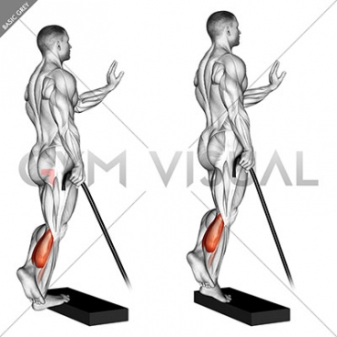 Band single leg calf raise