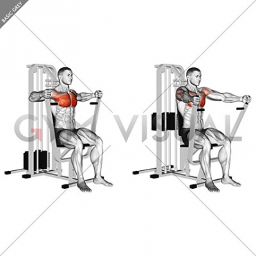 Lever Parallel Chest Press