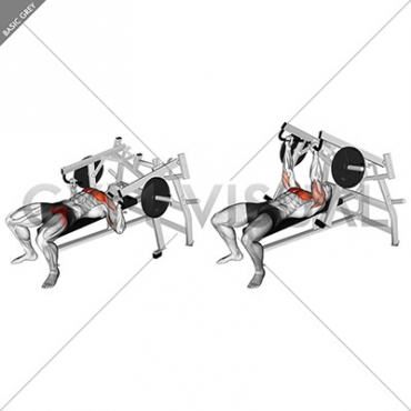Lever Lying Chest Press (plate loaded)