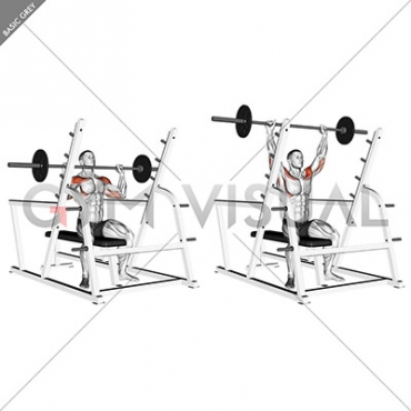 Barbell Seated Military Press (inside squat cage)