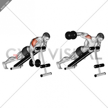 https://www.gymvisual.com/2959-large_default/dumbbell-lying-one-arm-rear-lateral-raise.jpg Rear Laterals