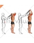 Assisted Standing Triceps Extension (with towel)