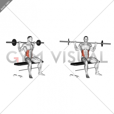 Barbell Seated Twist