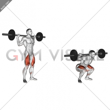 Barbell Speed Squat