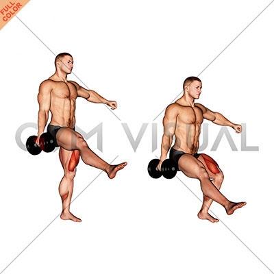 Dumbbell Single Leg Squat - Gym visual