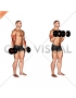 Dumbbell Standing Reverse Curl