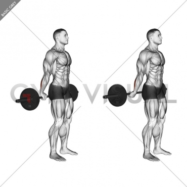 Barbell Standing Back Wrist Curl