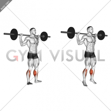 Barbell Standing Rocking Leg Calf Raise