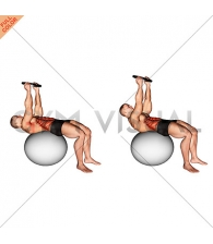 Weighted Overhead Crunch (on stability ball)