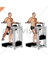 Lever Side Hip Adduction