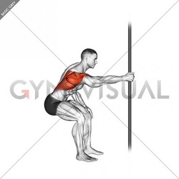 Fixed Bar Back Stretch