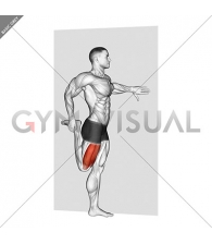 Standing Quadriceps Stretch