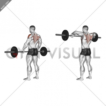 Barbell Wide-grip Upright Row