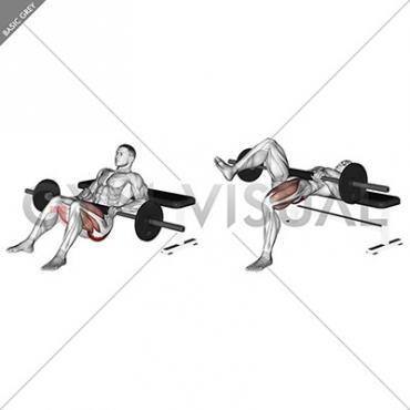 Barbell one leg hip thrust