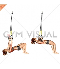 Suspension Bent knee Inverted Row