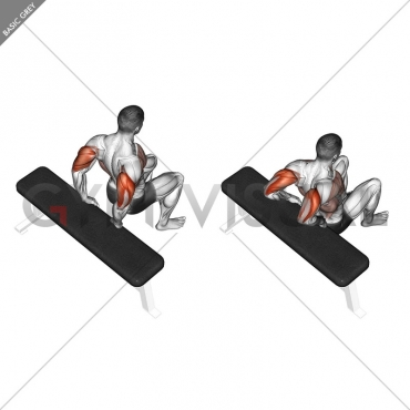 Bench Dip (knees bent)