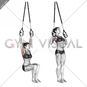 Suspension Self assisted Pull-up