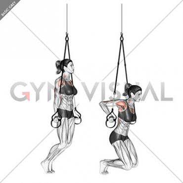 Suspension Self assisted Triceps Dip