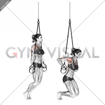 Suspension Self assisted Triceps Dip