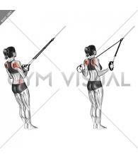 Suspension Shoulder External Rotation
