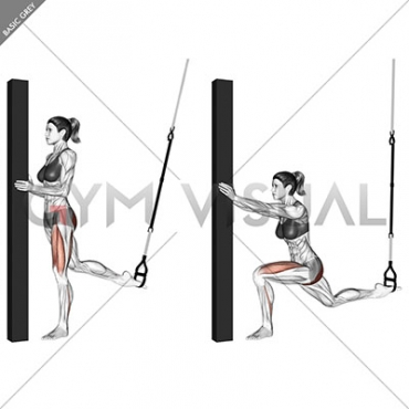 Suspension Single Leg Split Squat (self assisted)