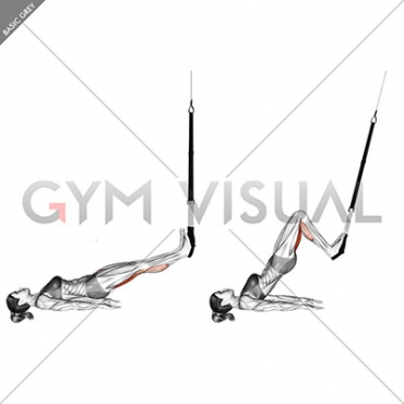 Suspension Straight Hip Leg Curl