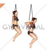 Suspension Triceps Dip