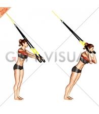 Suspension Triceps Extension