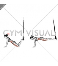 Suspension Front Plank