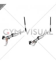Suspension Incline Push-up