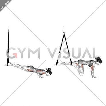 Suspension Mountain Climber Push-up