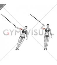 Suspension One Arm Biceps Curl