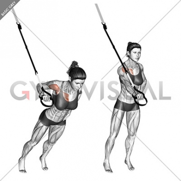 Suspension One Arm Chest Press