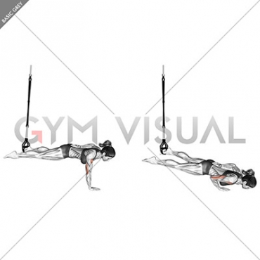Suspension One Arm Leg Push-up