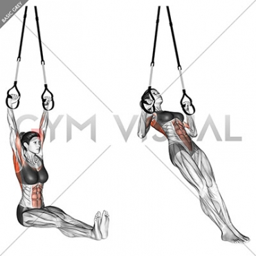 Suspension Pull-up (version 2)
