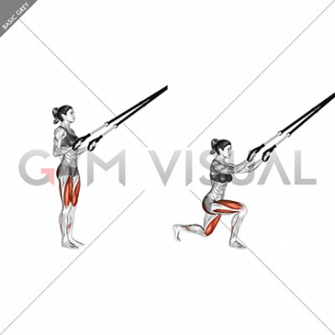 Suspension Rear Lunge