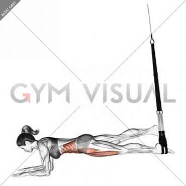 Suspension Single Leg Plank