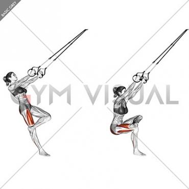 Suspension Single Leg Squat (figure)