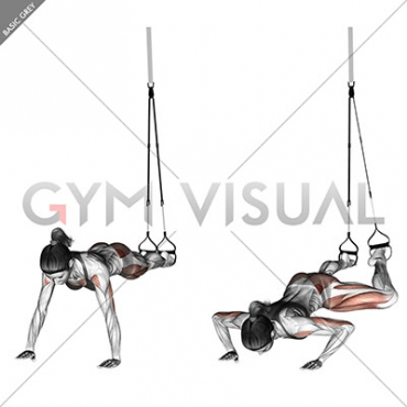 Suspension Spiderman Push-up