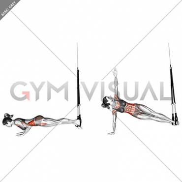 Suspension Star Push-up