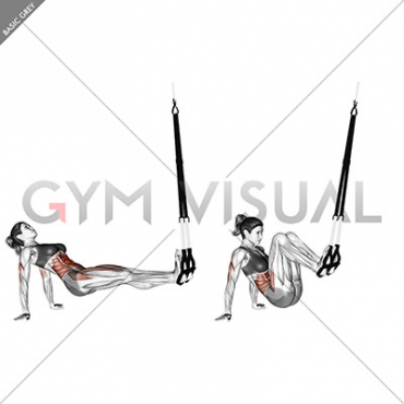 Suspension Supine Crunch