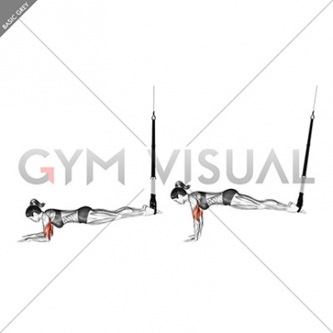 Suspension Triceps Extension Push-up